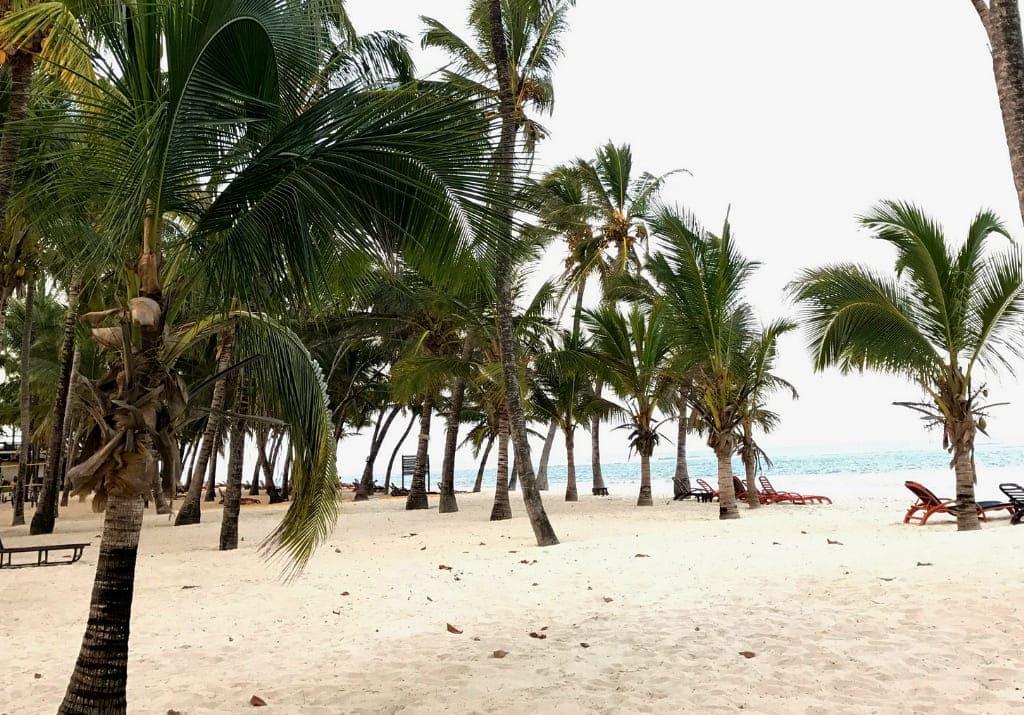 Kenia Tiwi Beach Amani Tiwi Beach Resort Kokospalmen weißer Strand indischer Ozean