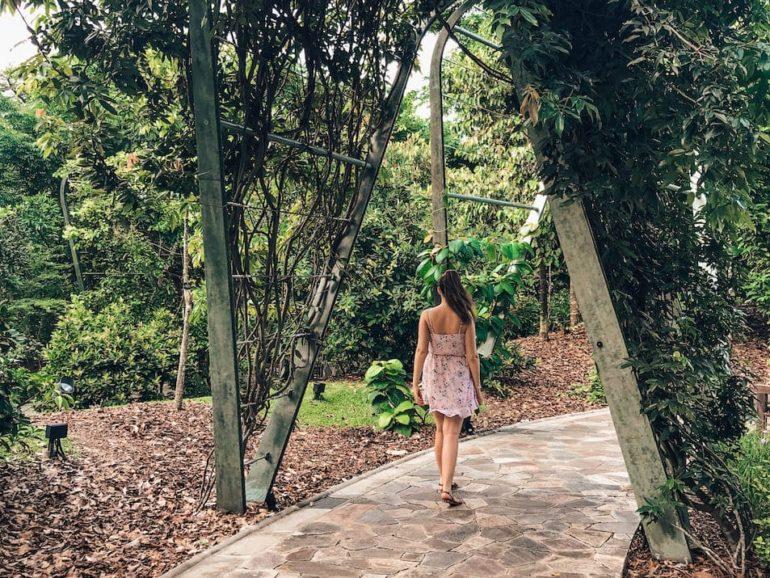 Singapur Reisetipps Geheimtipps Sehenswürdigkeiten Reisebericht Botanic Garden Singapore